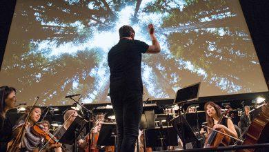 Photo of لغة الموسيقى: مقدمة في سيميائيات الموسيقى – فادي حنّا