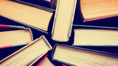 Photo of نظريات الأدب الماكرة: من الأدب السرداني إلى الأدب النسْوي – فريد الزاهي