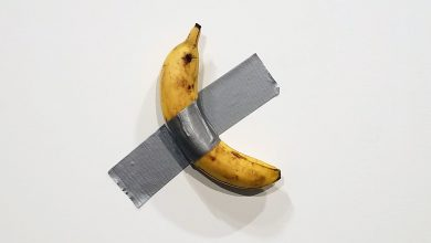 Photo of براديغم الفنّ المعاصر أو ثورة الفنّ عند نتالي إينيك – عزالدين بوركة